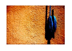 Line (terrymorrisphotography) Tags: blue shadow orange abstract celebrity art water rain wall wales garden outdoors photography cool paint artist pattern colours photographer arty stripes cymru arts wrap twist rope line burnt laundry terry raindrops string british welsh colourful tied dots peg washing speckled speckle terrymorris terrymorriswelshphotographer terrymorrisphotographer terrymorrisphotography
