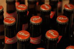 244/366 2012 Budweiser Party (Chris D. Jones) Tags: red beer field 50mm dof bottles top sony caps bud alpha budweiser depth lager a580 sonyalphalearningcenter
