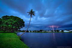 Palm-Beach-County-Lightning-Storm-Over-Lake-and-Coconut-Tree (Captain Kimo) Tags: storm coconuttree lightning highdynamicrange lakecatherine palmbeachcounty tonemapped photomatixpro hdrphotography singleexposurehdr hdrsoftware tonecompressor topazadjust topazdenoise captainkimo