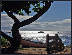 Magical Maui (Photographic Poetry) Tags: vacation beach hawaii paradise magic maui tropical tropic magical lahaina flickraward