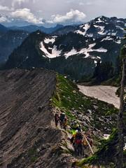 IMG_7164 (d_silva1) Tags: cascades glaciers pacificnorthwest mountbaker northerncascades alpinewildflowers mountbakernationalpark