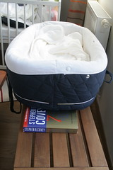 Multi-purpose book (jepoirrier) Tags: baby bench book basket 7 seven wedge cradle covey bassinet sooc thesevenhabitsofhighlyeffectivepeople