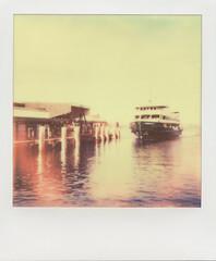 Queenscliff Ferry (Anita MW) Tags: film ferry polaroid spirit manly 600 expired freshwater manlyferry queenscliff