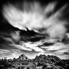 Joshua Tree Nationa Park (TroyMason) Tags: california longexposure sunset vacation blackandwhite blur tree rock yoga clouds landscape nationalpark desert wine joshua fineart joshuatree center retreat kirtan yuccavalley dinnerdate ca62 troymason twentyninepalmshighway troymasonphotographycom bhaktifest cannonbeachphotoreview