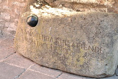 ricordando Cesare Pavese (g.fulvia) Tags: italia piemonte colline langhe pavese filari sstefanobelbo