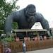 King Kong, Bobbejaanland, Belgium