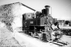 ΟΔΟΝΤΩΤΟΣ/RACK TRAIN (angelobike) Tags: greece eikones elladas τραίνο