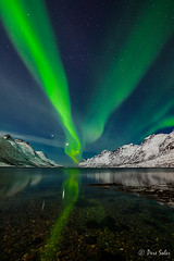 Fotografia de Auroras ( Pere Soler) Tags: norway venus nocturna noruega jupiter artic auroraborealis fiordo artico tromso auroraboreal ersfjorden