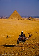 Rider on a camel, Pyramids at Giza, Egypt (broadswordcallingdannyboy) Tags: egypt pyramids camel giza desert velvia analogue film e6 slidefilm fuji canon leonreillyphotography egyptianpyramids leonreilly canoneos