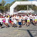 Color Me Rad 5K Run Albany - Altamont, NY - 2012, Sep - 01.jpg by sebastien.barre