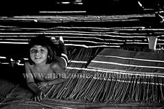 Yawalapiti (serge guiraud) Tags: brazil portrait festival brasil amazon para tribal exhibition exposition xingu tribe ethnic matogrosso tribo brsil plume amazonia tribu amazonie matis amazone amrique xavante asurini iny amrindien etnia kaiapo gaviao exposiao kuarup ethnie yawalapiti kayapo javari kuikuro xerente peinturecorporelle kalapalo karaja mehinako kamaiura yawari artamrindien sudamrique tapirap peuplesindigenes povoindigena parcduxingu parquedoxingu sergeguiraud jabiruprod expositionamazonie artdelaplume artducorps bassinamazonien amazonstribe amazonieindidennecom basinamazonien zo hetohoky parqueindidigenadoxingu jungletribes populationautochtones indiendamazonie