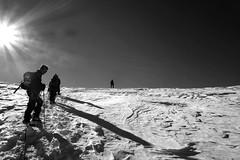 Ascent, Grossvenediger (macal1961) Tags: blackandwhite bw sun mountain snow texture monochrome austria track sony horizon mountainclimbing footprints climbing rays ropes tyrol clim ascent grossvenediger sonydscrx100