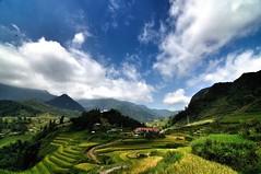 CatCat Village (@hbui) Tags: earthasia