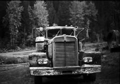 Old Canadian Kenworth truck (Rob McKay Photography) Tags: leica bw film analog kodak trix m6 canadiankenworthtruck bokehensteincom robmckayphotographycom