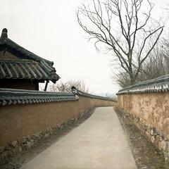 (*YIP*) Tags: 120 6x6 film mediumformat square asia kodak epson southkorea kiev60 iso160 epsonv500 yipchoonhong