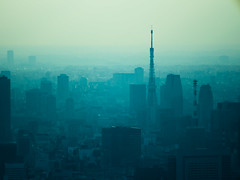 Tokyo Tower during haze. (Simon*N) Tags: city travel sunset sky urban cloud building tower tourism japan architecture night skyscraper buildings landscape outdoors tokyo evening town bill high haze shinjuku view angle capital group landmark olympus scene tourist aerial  destination metropolis material gradation        omd distant   unmanned    subcenter    urbanized     em5