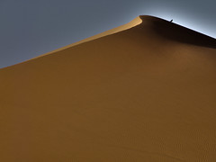 sahara (mat56.) Tags: sky bird sahara landscapes sand desert emotion dune cielo minimalism duna libya minimalismo paesaggi hdr linea deserto sabbia uccello libia fezzan ramlatdawada emozione mat56 bestcapturesaoi mygearandme