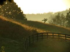 morning light~ (beth~yellowhousedays) Tags: morninglight sperryvillevagetaway afallmorninginvirginia