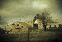 Conjunto de casas