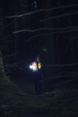 lost... (CatMacBride) Tags: night forest tree lamp dark