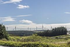 Treherbert Wind Farm (12) (Mal.Durbin Photography) Tags: rhonddacynontaf rhonddacynontaff rct rctlandscape maldurbin walesuk southwalesuk
