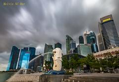 The Merlion (melvhsc100) Tags: merlion marina financial center lanscape singapore icon outdoor nikon wideanglelen sky architecture