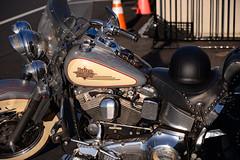 Harley Davidson at sunset (Explored) (Don Mosher Photography) Tags: