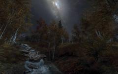 Skyrim (peterned) Tags: game screenshot modded elder scroll skyrim evening stars forest rocks stream rudy enb nlva