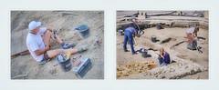 Man at Work Women at Work - Digging in front of a Church - Cemetery Mann bei der Arbeit, Frauen bei der Arbeit: Ausgrabungen auf einem Kirchplatz - Friedhof - ffentlich mitten in einer Stadt 9. Juni 2016 (hedbavny) Tags: frau woman aufzeichnen festhalten notieren notiz plan schreiben beobachtung unterwegs freizeit leisure rundgang runde skelett sceleton ausgrabung ausgraben entblsen freilegen ausgrabungssttte baustelle digging kirche church friedhof handschuh gloves werkzeug besen pinsel kbel wasser water werkzeugkasten man male mann blue blau grey grau weis white red rot women female dead tot death fund arbeit work arbeiter worker arbeiterin pause portrait schuhe shoes hand fus bone bein knochen archologie fundstelle fundort stadt city town bundesdenkmalamt hedbavny ingridhedbavny