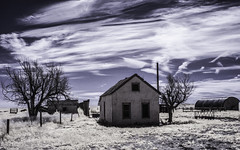 (explore) (unknown quantity) Tags: abandonedhouse sky clouds deadtrees utilitypole fence vaportrails weathered grass cloudsstormssunsetssunrises openwindows infrared brokenroof horizon fadedpaint hss