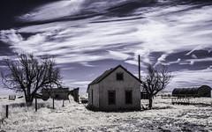 Arriba, Colorado (explore) (unknown quantity) Tags: sky clouds deadtrees utilitypole fence vaportrails weathered grass cloudsstormssunsetssunrises openwindows infrared brokenroof horizon hss abandonedhouse fadedpaint