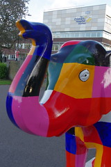 22.9.16 Elephants in Sheffield 121 (donald judge) Tags: sheffield herd of elephants chldrens hospital charity