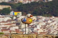 219 - Farolim da Nazar (paspog) Tags: nazar portugal mouette mouettes seagul seaguls