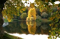 Stourhead (janroles) Tags: foliage water stourhead nature serene reflection trees colour plants canoneos400d flickr leaves autumn lake