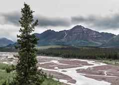 Savage River (Gentilcore) Tags: alaska denalinationalpark landscape mountains nationalparkservice rivers savageriver water healy unitedstates