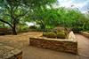A Different Garden (John C. House) Tags: everydaymiracles nik nikon d700 phoenixbotanicalgarden desert johnchouse cactus aurorahdr southwest phoenix arizona hdr