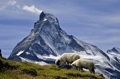 Matterhorn from Hhbalmen (pierre hanquin) Tags: blue light summer sky cloud sun mountain snow mountains alps color colour green nature colors berg montagne alpes landscape geotagged schweiz switzerland soleil nikon europa europe colours suisse couleurs swiss clear bleu ciel neige zermatt matterhorn grn blau helvetia svizzera nuage nuages paysage landschaft wallis couleur ch valais montagnes cervin cervino 1685 1685mm d7000 1685mmf3556gvr mygearandme mygearandmepremium hanquin