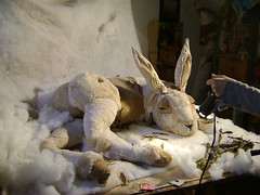 Joseph- (ensayos para una animacion) (Valeria Dalmon) Tags: sculpture white rabbit art blanco animal hare doll arte photos conejo escultura puppets textil liebre artevaleriadalmon