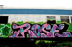 ROSE. (NTHESTREETS) Tags: streetart art rose train graffiti orlando florida graf railway trains vandalism boxes spraypaint boxcar graff aerosol freight boxcars vandals freights