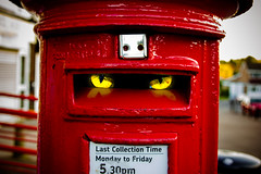 day 348 - I'm watching you (AlexTurton) Tags: cat photoshop canon eyes glow post box sigma postbox postal 365 catseyes cateye sigma2470 project365 60d canon60d sigma2470mm28