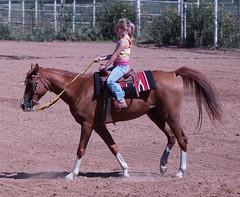 SSRUC (Garagewerks) Tags: horse oklahoma sport youth race outdoors cowboy all ride barrels sony barrel flags rodeo poles cowgirl 70300mm tamron saddle countryliving sandsprings barrelracing barrelrace f456 roundupclub slta65v ssruc sandspringsroundupclub