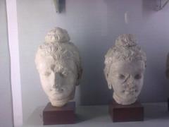 Gotham Budh (KNIGHTS1122) Tags: museum budha gotham taxila