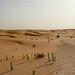 Quando o escuro da sobra contrasta com a areia