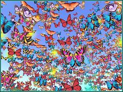 Vision papillonnante (Tim Deschanel) Tags: life animal butterfly tim concert good sl papillon end second jana week bye bodhisattva deschanel kyomoon keckroth