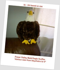 "FVBEF Stuffed eagle souvenirs various sizes $5 -$15 • <a style=""font-size:0.8em;"" href=""https://www.flickr.com/photos/51193137@N08/8024777270/"" target=""_blank"">View on Flickr</a>"
