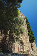 Castelo de Alter do Cho (Rui Pedro Vieira) Tags: travel tree tower castle portugal architecture arquitectura ancient torre gothic medieval castelo viagem historical alentejo fortress rvore arco muralha schist ameias gtico portalegre alterdocho altoalentejo mygearandme castelodealterdocho