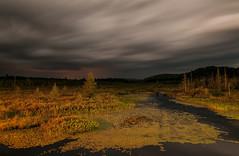 Marsh at Night (maine_mike) Tags: new york trees sky cloud nature water night long exposure eerie adirondacks swamp marsh raquettelake