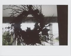 (AndrewStraub) Tags: door polaroid outside fuji wreath instant instax 210