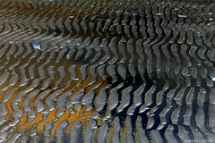 Ripples (Annette LeDuff) Tags: reflection favorited monroemi ecoledesbeauxarts fireandice italianlifestyle digitallyaltered abstractreality coth digitalabstract vividimagination sterlingstatepark newdirections artandphotography newreality scarabus artbandits gaveyachills qualityabstracts viennesecoffeehouse sharingart theawardtree freedomhawk intoyourheart exoticimage crazyandgeniusesofflickr artwithoutend allcollectionsandpatternstexturesdetailedstudies floorprimus digitalworksofart chariotsofartistslevel1 chariotsofartistslevel2 netartii photoannetteleduff annetteleduff chariotsofartistslevel3 lesamateursdart faireabstractiondetout floortertius awesomelycreativeforedinei favtop5099 creativeimpulselevel1 thelooklevel1red thelooklevel2yellow thelooklevel3orange thelooklevel4purple thelooklevel5green thelooklevel6blue thelooklevel7white thestickybeakawards 09232012 flickrclickx adilmehmood