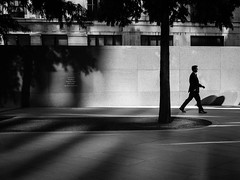 Memento (Rupert Vandervell) Tags: street city trees windows shadow people sun white man black building tree sunshine stone architecture contrast walking shadows bright vibrant bricks shapes dramatic atmosphere pedestrian olympus business suit human british rupert brickwork em5 vandervell